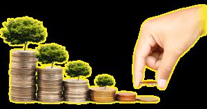 Инвестиции в реальный бизнес. Высокая доходность за короткий срок!